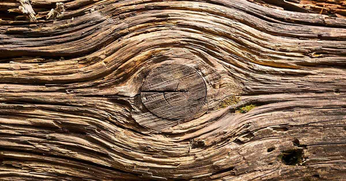 resistenza legno lamellare clt ingegnerizzato